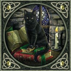 cat with books-LISA PARKER GREETING