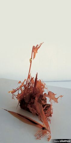 439, El Bulli, 1997, postre (dessert) chocolate en texturas (textured chocolate)