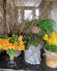 This is how you do flower arrangements with height and character 0 love the tree trunk vase & mix & match of planters!!!