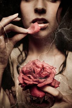 Kirsty Mitchell - La Jardin de ma Mere Nocturne Series) Benefits of Eating Roses: Weight loss, lightens lip color, moisturizing, etc. Can create a face mask from roses. Consuming beauty to remain beautiful. Bokeh, Kirsty Mitchell, Foto Fantasy, Fantasy Art, Deco Rose, Elephant Love, Nocturne, Pink Brown, Writing Inspiration