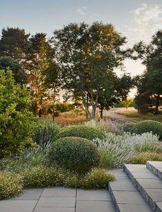 Perennial Flower Gardening - 5 Methods For A Great Backyard Dan Pearson Little Dartmouth Garden House and Garden