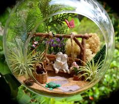 Kit ~ Air Plant Terrarium Kit ~ Bunnies on a Swing ~ Turtle +. -Terrarium Kit ~ Air Plant Terrarium Kit ~ Bunnies on a Swing ~ Turtle +. Air Plant Terrarium, Garden Terrarium, Terrarium Kits, Turtle Terrarium, Moss Garden, Succulent Planters, Hanging Planters, Succulents Garden, Plant Design