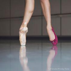Sam Edelman ballet flats on PNB dancer Carli Samuelson © Lindsay Thomas Lindsay Thomas, Pacific Northwest Ballet, Dance Fashion, Glass Slipper, Ballet Flats, Ballerina, Dancer, Dance Shoes, Legs