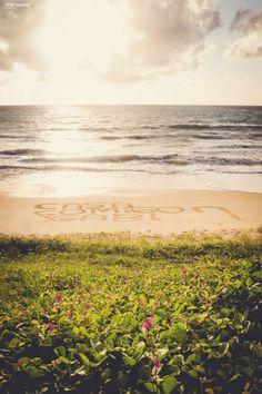 pedido-de-casamento-surpresa-na-praia-violino-cafe-da-manha (9)