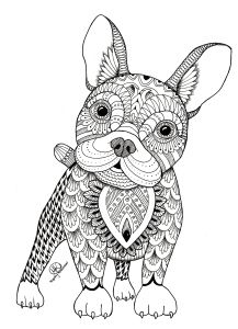 Frenchie Adult Coloring PagesColoring