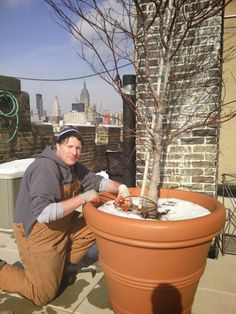 Drip Irrigation installation in winter NYC New York Plantings Irrigation and Landscape Lighting  333 E 14 st   box 1229  Manhattan, NY 10009  646-434-8049