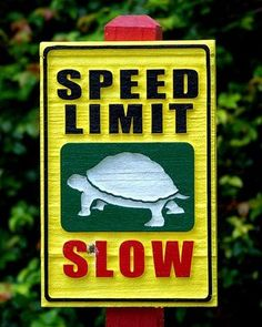 Beautiful World | Drawings Arts | Illusions | Amazing Facts | Sculpture: 15 Funny Animal Signs