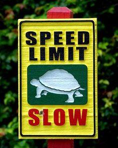 Speed Limit (turtle) Slow