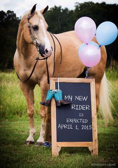 Horse baby announcement