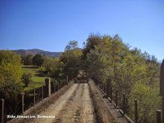 BIKESENSATIONRO: Sinca de Rusalii Mtb, Country Roads, Bicycles