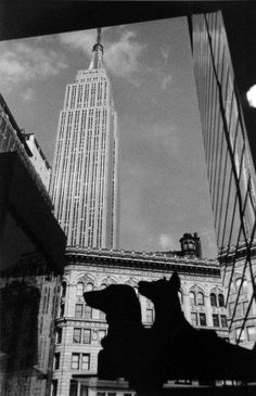 Empire State Building ** Check out the image by visiting the link.
