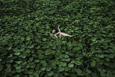 Las fotos de Prue Stent son grotescas y hermosas | VICE | México