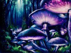 Euphoria Psychedelic Mushrooms <3