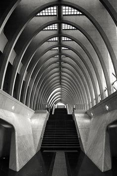 Liege's train station Les Guillemins, designed by Spanish architect & engineer Santiago Calatrava.