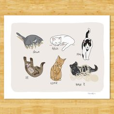 Cats Being Cats Art Print - Funny Cat Gift  - Sit Stay Come Cat Art Free Shipping on Etsy, $12.49