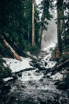 Forest stream in snow The 30 Most Beautiful Nature Photography - organic adventure in the wild through a forest of evergreen trees in the fall autumn through fog like a hippie boho bohemian with a rushing white blue lake Beautiful World, Beautiful Places, Landscape Photography, Nature Photography, Travel Photography, Nature Sauvage, All Nature, Nature Tree, Adventure Is Out There