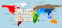 A new study reveals the full extent of globalization in the world's food supply. The researchers put together a series of interactives that visualize the results. Here's a screen grab, which shows crops that originate in South Asia. Click here to see more interactive maps.