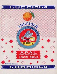Vintage Labels, Vintage Ephemera, Vintage Packaging, Fruit Packaging, Packaging Design, Vintage Prints, Vintage Designs, Collage Background, Orange Paper