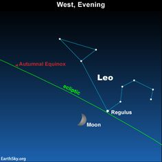 Moon pairs up with star Regulus