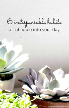 Can changing your habits change your life? Try these 6 habits and see for yourself! 6 Indispensable Habits To Schedule Into Your Day Good Habits, Healthy Habits, Planning Your Day, Peace Of Mind, Motivation, Better Life, Live For Yourself, Self Improvement, Self Help