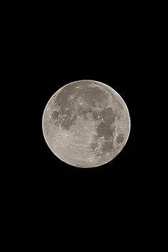 Moon/Glow In Eternal Night. Moon Photos, Moon Pictures, Phoenix Legend, Ciel Nocturne, Mystic Moon, Luna Moon, Moon Dance, Shoot The Moon, Moon Shadow