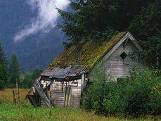 antigo celeiro em um campo