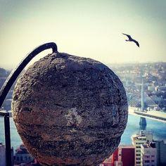 """...özgürlük ve uçabilmeye ait hiçbir şeyle sınırlanması mümkün olmayan mükemmel bir fikirdi""  ""...a perfect idea of freedom and flight limited by nothing at all"" #richardbach #martı #Seagull  _____________________________________________ #architecture #building #streetphotographer #design #material #art #oyaakkul_3 #travel #traveling #vacation #visiting #instatravel #instago #instagood #trip #holiday #photooftheday #tourism #tourist #instapassport #instatraveling #mytravelgram #travelgram…"