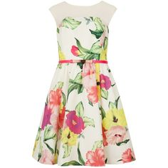 Ted Baker Iberis Flower Print Dress, Cream found on Polyvore