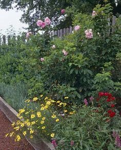 Country Garden Photos