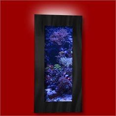 Wall Mounted Aquarium!