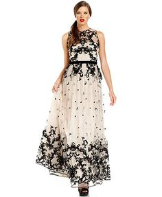 Adrianna Papell Dress, Sleeveless Illusion Velvet Embroidered Gown