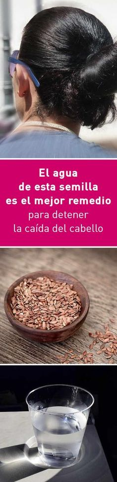 El agua de esta semilla es el mejor remedio para detener la caída del cabello Beauty Secrets, Diy Beauty, Beauty Hacks, Super Hair, Beauty Recipe, Grow Hair, Healthy Hair, Hair Trends, Hair And Nails