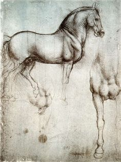 Study of horse from Leonardo's journals‍—‌Royal Library, Windsor Castle.  A page with two drawings of a war-horse, one from the side, and the other showing the chest and right leg