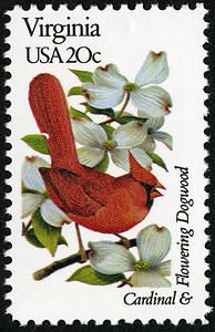 A 1982 stamp featuring Virginia's state bird, the flowering dogwood, and state bird, the cardinal.