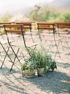 simple yet elegant cafe chair and green potted plant ceremony decor | Photography: Jake Anderson
