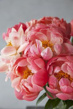 Silk Flowers, Bloom, Peach, Vase, Color Palettes, Nature, Plants, Gardening, Beautiful