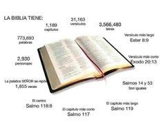 Libros de la Biblia                                                                                                                                                      Más