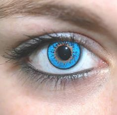 1000 Images About Colored Contacts On Pinterest Colored