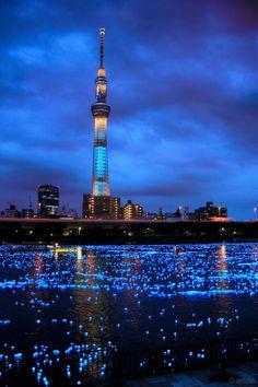 Sky Tree Sumida River Tokyo Japan