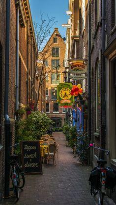 Amsterdam, Netherlands  (Photographer: Angel Flores)                                                                                                                                                                                 More