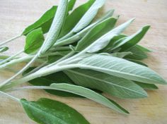 Spiritual Benefits of Sage