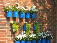 Recycled coffee cans painted and hung on the wall to make beautiful planters - love the blue and white with that touch of purple against the brick!