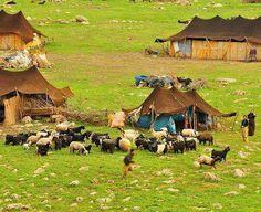kurdistan ✿♫ღ