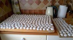 Mini koláčiky z majonézy bez kysnutia Hungarian Desserts, Hungarian Cake, Hungarian Recipes, Spa Basket, Kitchen Machine, Fun Deserts, Homemade Sweets, Czech Recipes, Sweet Cookies
