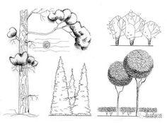画树,画人,画设计,我有不一样的!