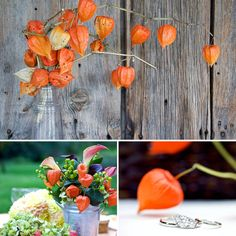 """Chinese Lanterns: """"Chinese Lanterns are perfect for Fall weddings because their gourd-like shape brings thoughts of pumpkins to the mind,"""" says Catherine. Because of its large size, the expert florist opts to use Chinese lanterns more in centerpieces rather than personal flowers.  Photos by Kate Webber via Style Me Pretty  Source: Flickr User William Landry Photo"""