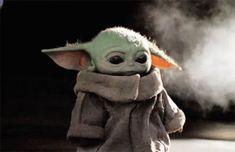 Baby Yoda The Mandalorian GIF - BabyYoda TheMandalorian Cute - Discover & Share . - Best of Wallpapers for Andriod and ios Yoda Gif, Yoda Meme, Yoda Funny, Star Wars Baby, Baby Animals, Funny Animals, Cute Animals, Bmw 1200, Yoda Images
