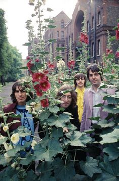 In the summer of The Beatles were in the midst of recording 'The Beatles' (The White Album). Beatles One, Beatles Photos, Beatles Poster, The White Album, What Makes You Beautiful, Motionless In White, The Fab Four, First Tv, Pierce The Veil