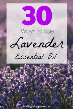 30 Ways to Use Lavender Essential Oil - Dwelling In Happiness
