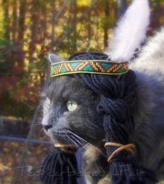 Chapeau pour chat